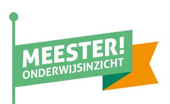 Meester! Onderwijs inzicht Logo